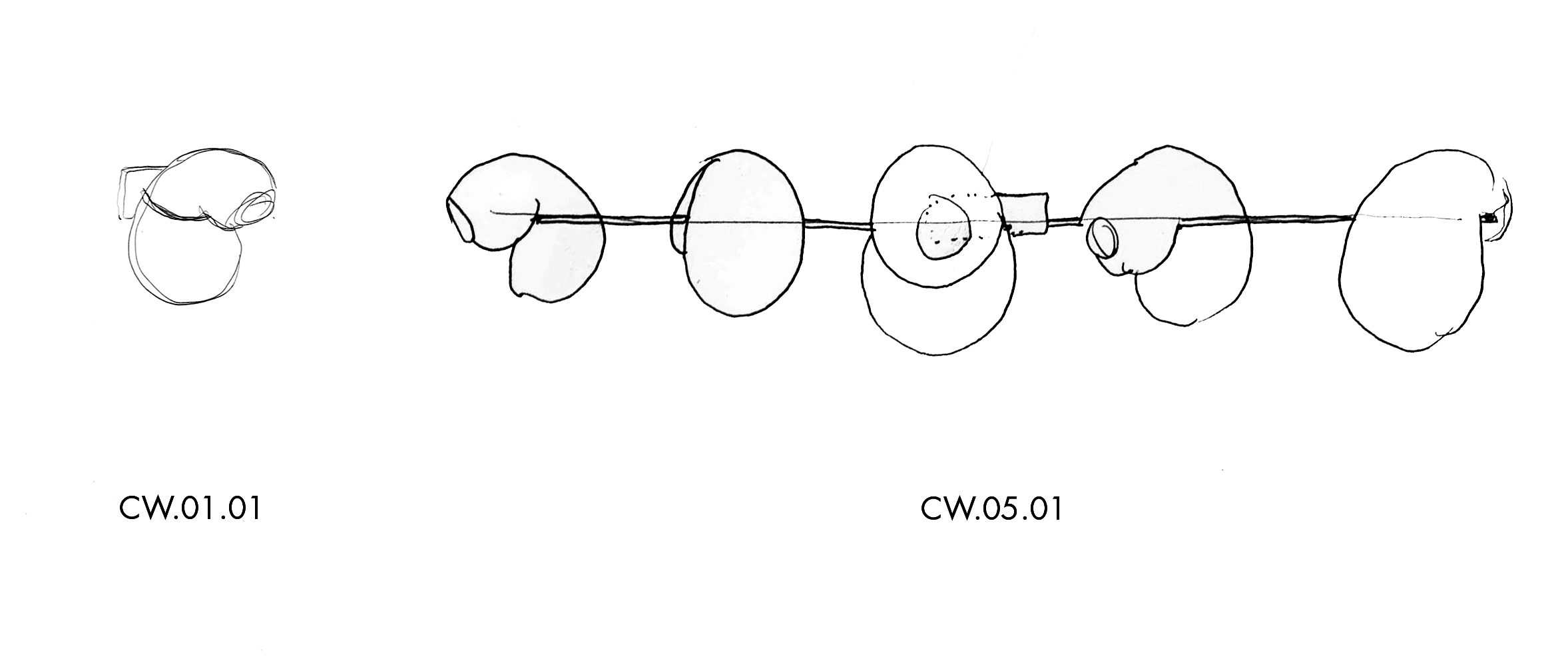 B6_CW.01.01 and CW.05.01